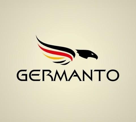 Stylish logo design