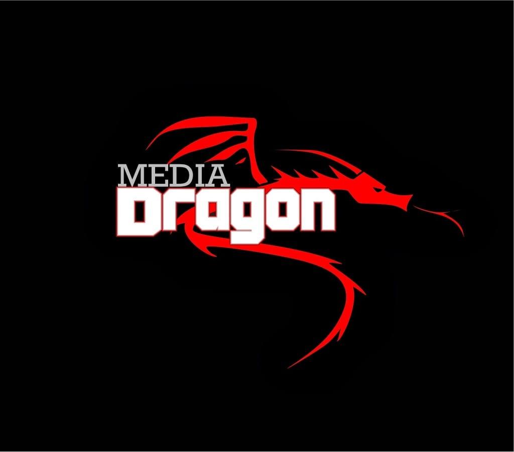 Awesome logo design Dragon