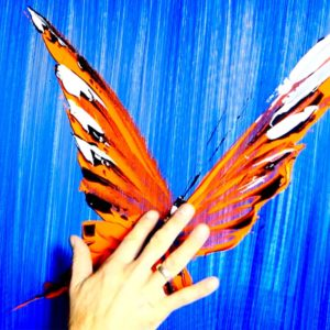 ORANGE BUTTERFLY ABSTRACT PAINTING BY DRANITSIN