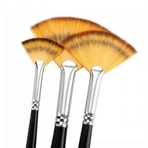 fan brushes recommended by peter dranitsin