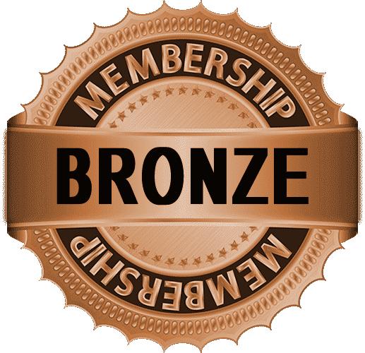 Exclusive bronze membership art video tutorials by Peter Dranitsin